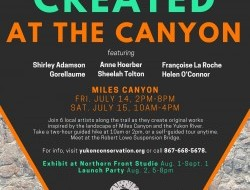 YCS Created at the Canyon poster 2017
