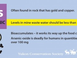 Arsenic less than 1 mg/L (with YCS logo)