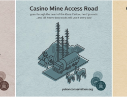 Casino Mine Energy Use Access Tailings